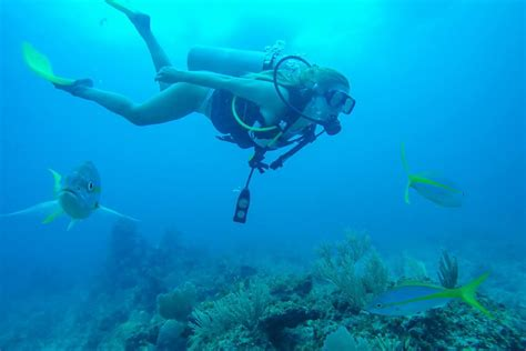10 reasons to scuba dive on your next trip the blonde abroad