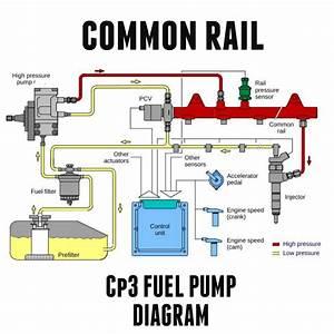Duramax Fuel System Wiring Diagram