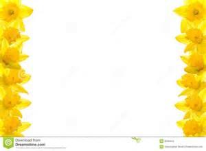 freesia flower daffodil border stock photos image 8058443