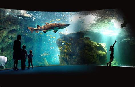 la rochelle aquarium tarif aquarium la rochelle la rochelle tourisme hotel la rochelle location la rochelle chambres