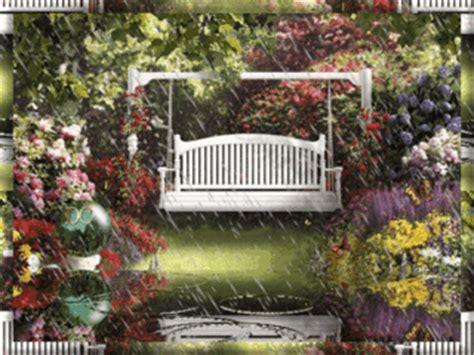 spring rain   garden pictures   images