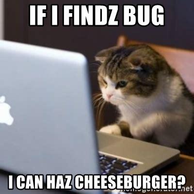 I Can Haz Meme Generator - if i findz bug i can haz cheeseburger cat computer meme generator