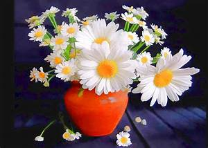 Blazing White Daisies In Persimmon Vase Painting by Elaine