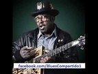 Bo Diddley - Thursday Night At The Square, Buffalo; New ...