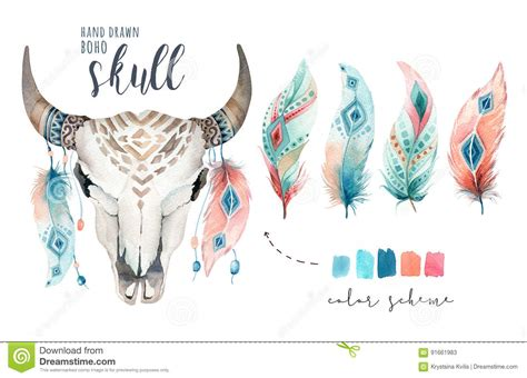 Watercolor Bohemian Cow Skull Feather Western Mammals