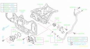 Subaru Tribeca Engine Water Pump Bolt  Timing  Cover  Belt