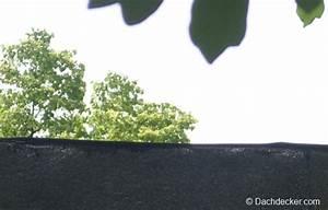 Dachpappe Verlegen Ohne Gasbrenner : selbstklebende dachpappe schneller verlegen ~ Orissabook.com Haus und Dekorationen