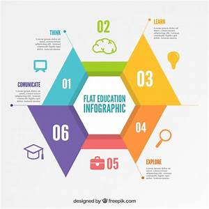 Education Infographic Template Vector