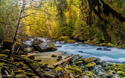 mountain river north fork skokomish river olympic national