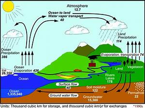 The Changing Water Cycle
