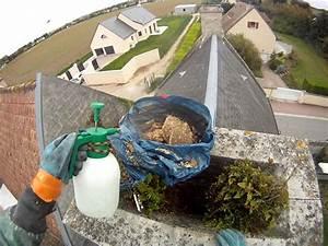 Nid De Guepe Dans Le Sol : comment detruire nid de guepes ~ Dailycaller-alerts.com Idées de Décoration