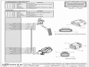 Throttle Body Wiring Diagram Infinity