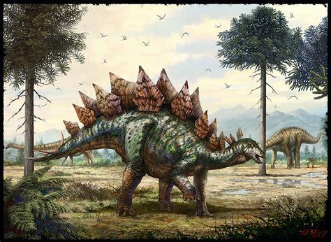 Stegosaurus Pictures & Facts