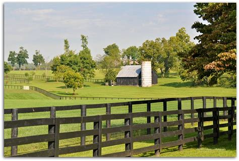 Kentucky Horse Country Flickr Photo Sharing