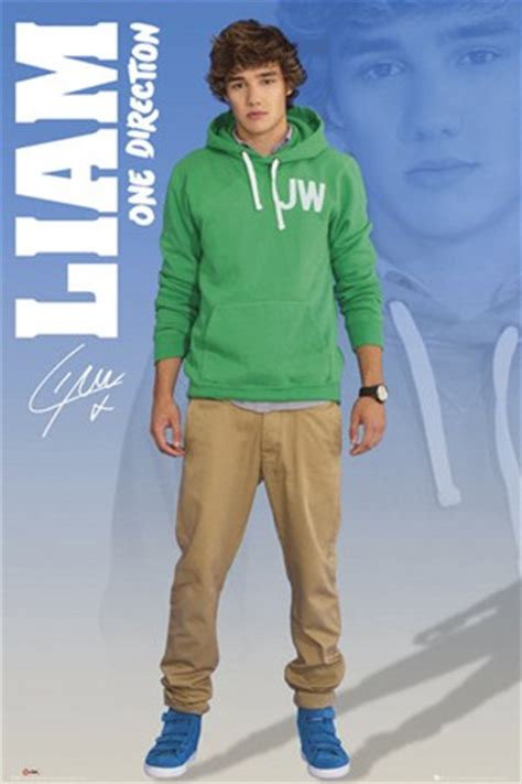 liam  direction poster buy
