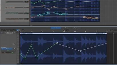 Midi Draw Logic Working Without Track Audio