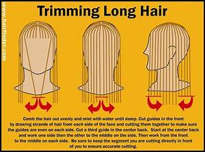 Hairfinder Com U0026 39 S How To Trim Hair Guide  Tips For The