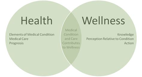 Health And Wellness difference between health and wellness ccc