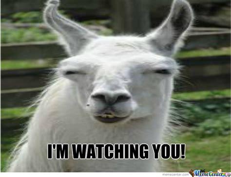I M Watching You Meme - i m watching you by geenadavissmile meme center