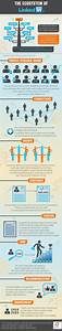 The Ecosystem Of Linkedin   Infographic  Includes How Linkedin Works And What You Should Really