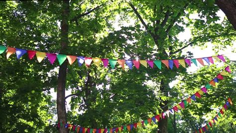 stock video clip  colorful flags hanging  branches