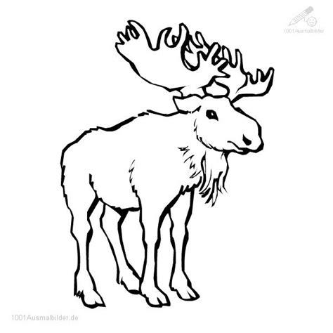 malvorlage elch