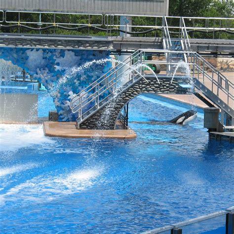 Swimming Pool Cooling Fountain  Backyard Design Ideas