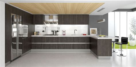 prime examples  modern kitchen cabinets