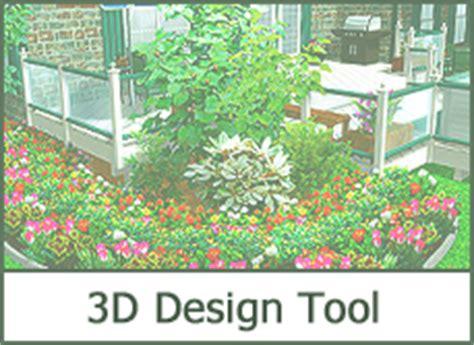 best perennial flower plants photos of garden perennials