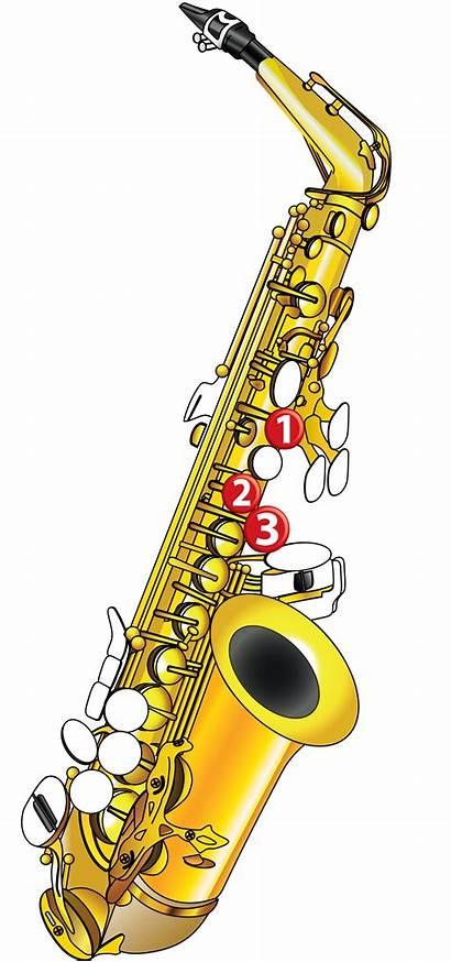 Saxophone Notes Note Sax Beginners Tutorial Diagram