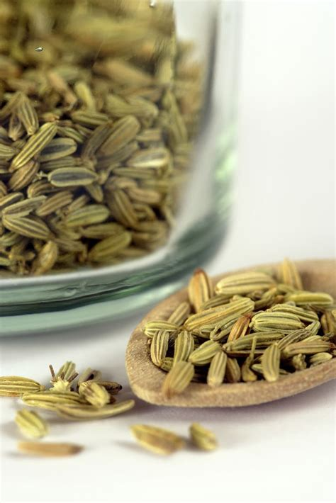 what part of fennel do you use 56 best images about culinay journey malaysian food