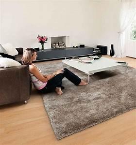 tapis pour salon idees de decoration interieure french With tapis décoratif pour salon