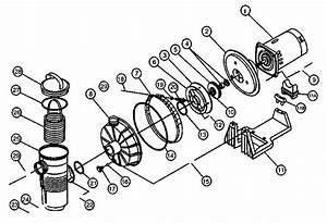 Hayward Pump Parts Diagram
