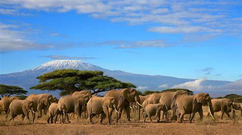 18 Days Kilimanjaro Safari Tanzania and Zanzibar Beach
