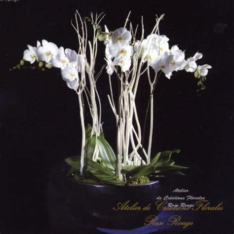 composition de fleurs moderne composition of phalaenopsis atelier de creations florales