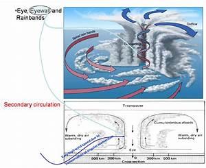 How Do Tropical Cyclones Form