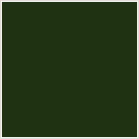 seaweed color 203311 hex color rgb 32 51 17 green seaweed