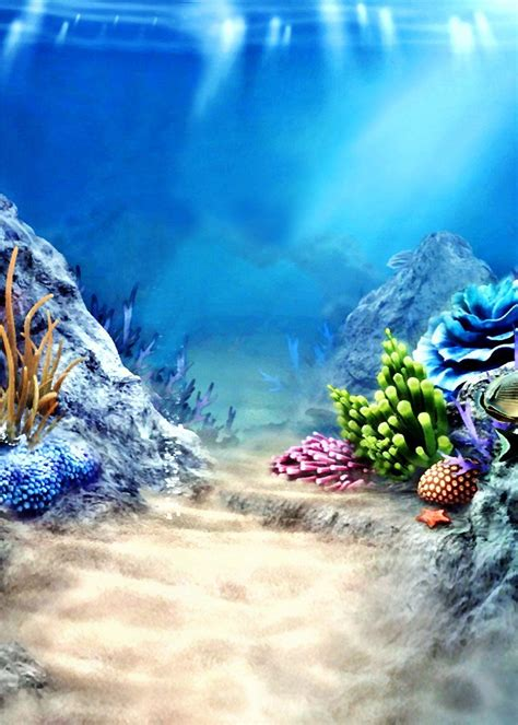 amazoncom susu photography backgrounds  sea