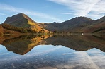 The Lone Tree Buttermere, Cumbria, England - England's Lake...