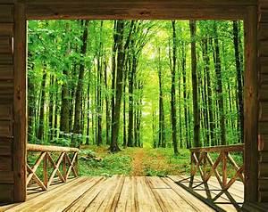 Walltastic Fototapete Bume Wald Spaziergang Www4 Haende