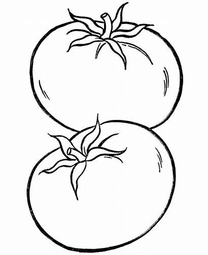 Coloring Vegetable Pages Tomato