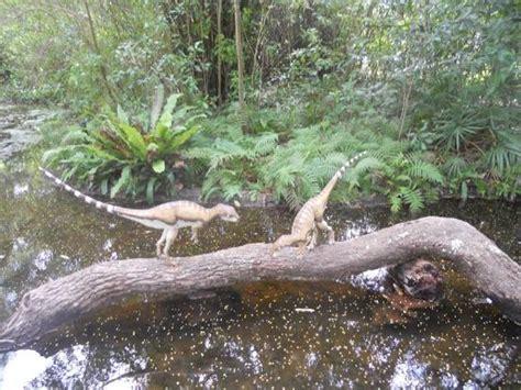 foto de mckee botanical garden vero compsognathus