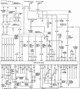 99 Honda Accord Fuel Pump Wiring Diagram