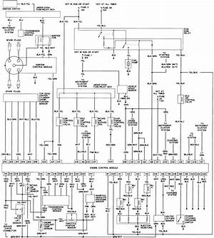 Stereo Wiring Diagram 1998 Honda Accord 3749 Archivolepe Es