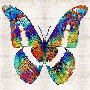 #butterfly #butterflies Colorful Butterfly Art By Sharon ...