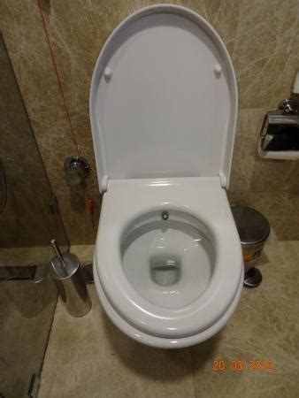 Toilets With Built In Bidet  Lunnic Designs