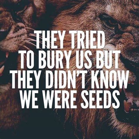seeds quotes seeds sayings seeds picture quotes