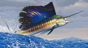 Sailfish Painting by Wildlife Artist Mark Mueller