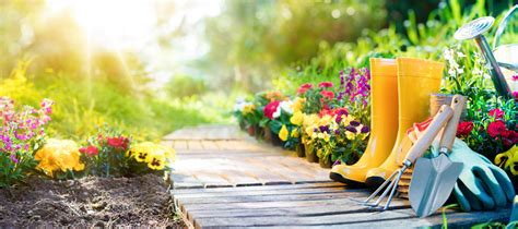 Summer Gardening & Plants  Bauman's Farm & Garden