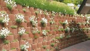 Pflanzen Zur Hangbefestigung : pflanzringe zur hangbefestigung garten pinterest garten pflanzen und garten ideen ~ Frokenaadalensverden.com Haus und Dekorationen